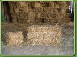 Miniature Straw Bale