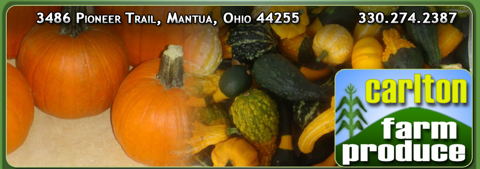 Wholesale Pumpkins